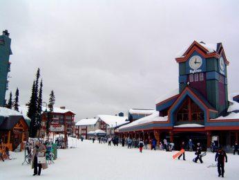 Say High to Okanagan Tours 6