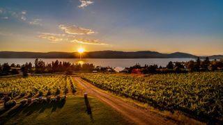 Summerhill-Pyramid-Winery-Sunset0_46e0e4bb-5056-a36a-0b07fde3241000ce-1024x576
